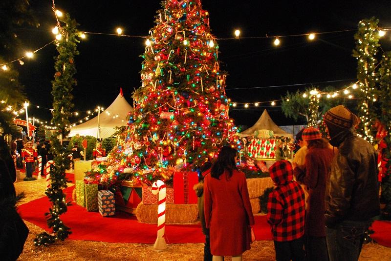 ChristmasFestivalCelebration