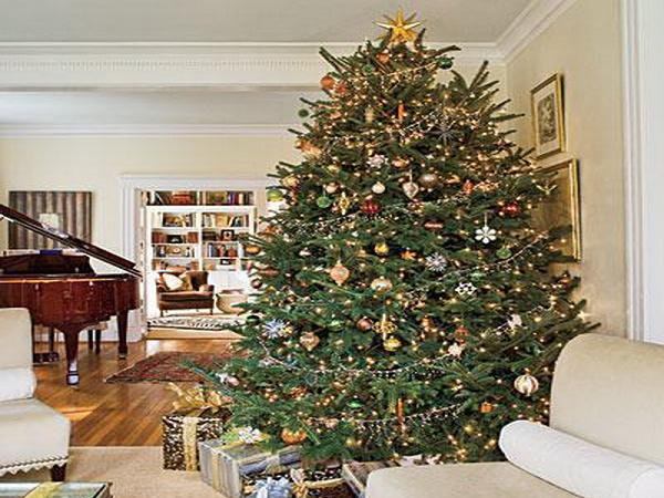 decorating-christmas-tree-ideas