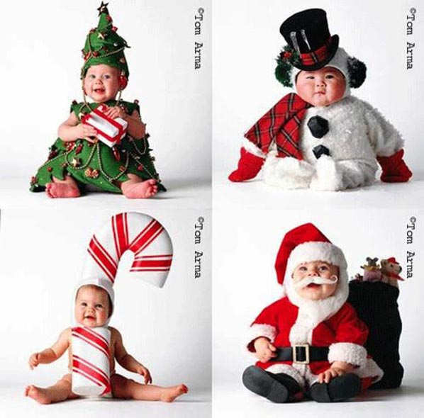 funny christmas cards and funny christmas photo cards