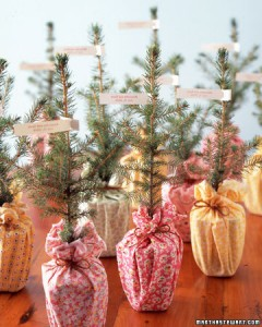 Christmas Weddings are double the fun. Even the wedding favors are taken care of. Photo Credit: http://www.marthastewartweddings.com