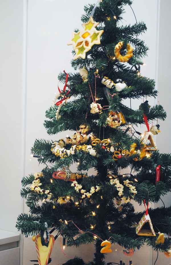 the-edible-christmas-tree-3