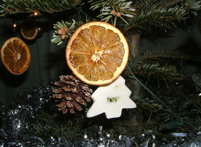 Ideas-for-Homemade-Christmas-Ornaments-Dried-Ornaments
