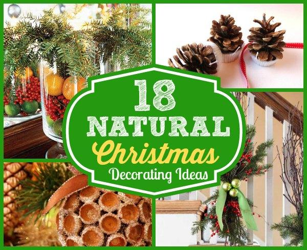 Michaels Christmas Decorations 10 Natural Ornaments For