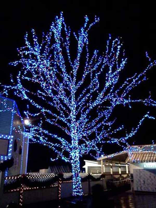 blue-christmas-light-decoration-ideas  sc 1 st  Christmas Celebration & Blue Christmas Decorations - Christmas Celebration - All about Christmas