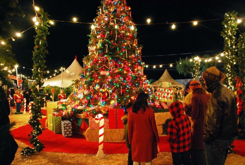 Christian Tours December