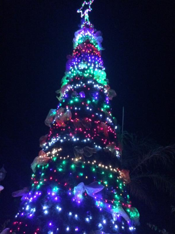 Christmas In Punta Cana