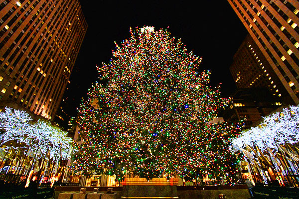 Where To Go On A Christmas Day Check Out Our Top Places
