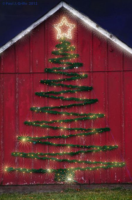 most-beautiful-christmas-trees-50