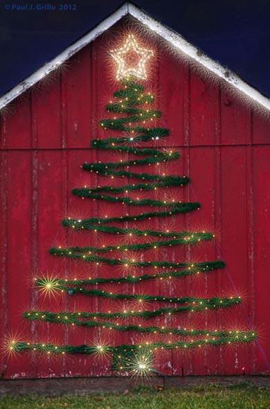 outdoor-christmas-tree-ideas