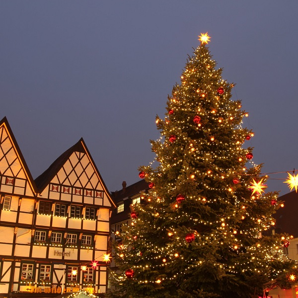 the traditional outdoor christmas tree 1 - Outdoor Christmas Trees
