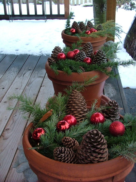 Outdoor Christmas Tree (10)