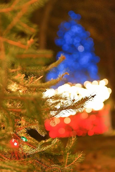 Outdoor Christmas Tree (14)
