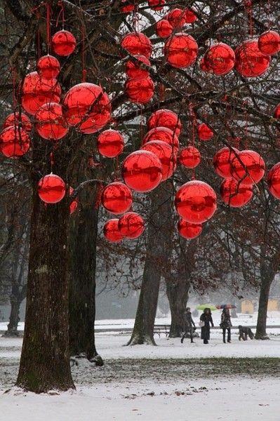 Outdoor Christmas Tree (15)