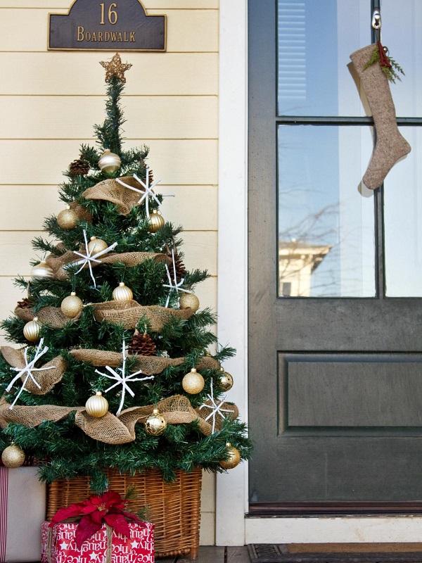 Outdoor Christmas Tree (2)
