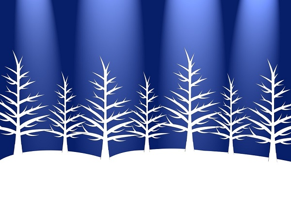 Outdoor Christmas Tree (30)