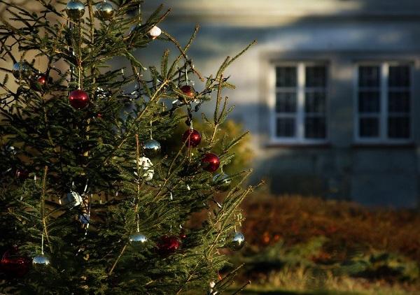 christmas-1101711_960_720