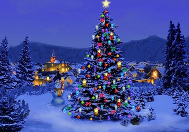 stunning outdoor christmas tree