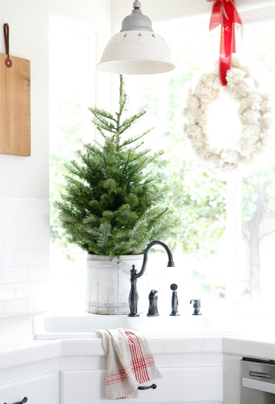 place a small pine tree in a bucket and put on the kitchen counter top