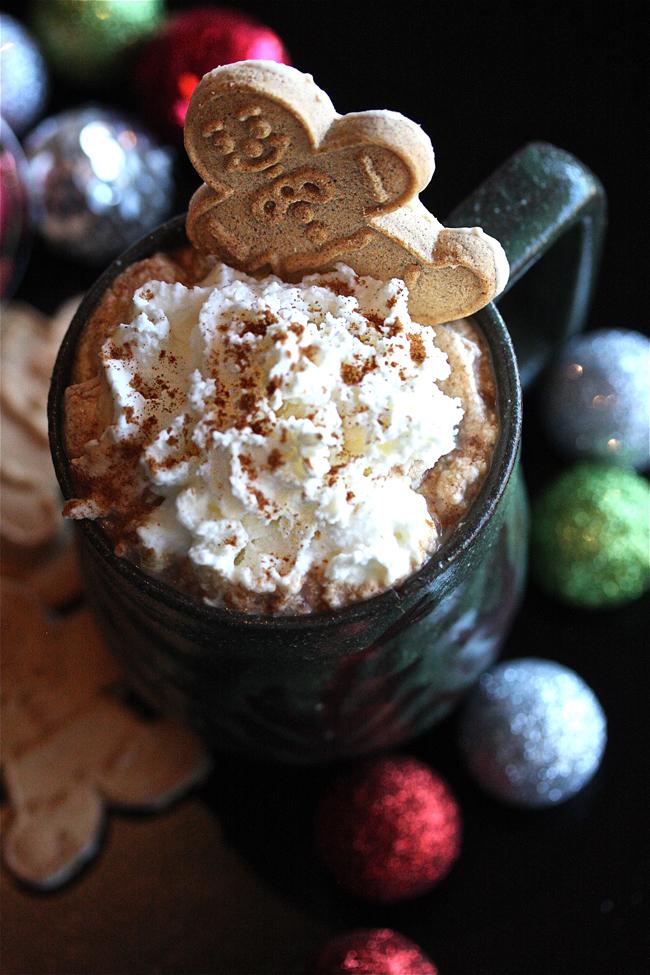 Spiced Hot Chocolate Recipes