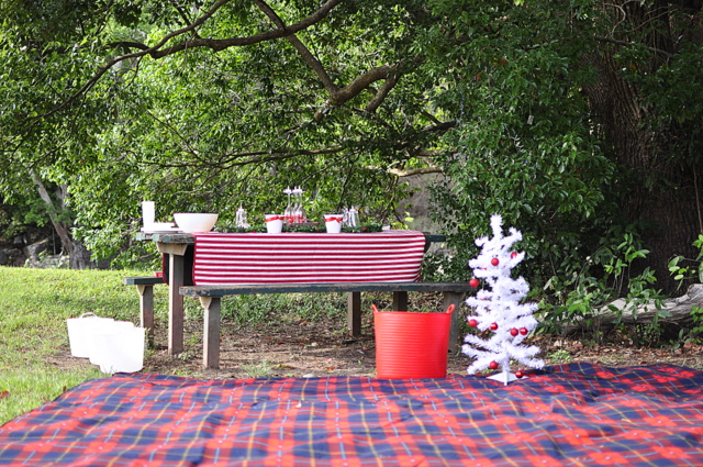 Outdoor Christmas Table Setting Ideas