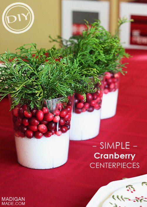 cranberry christmas decorations