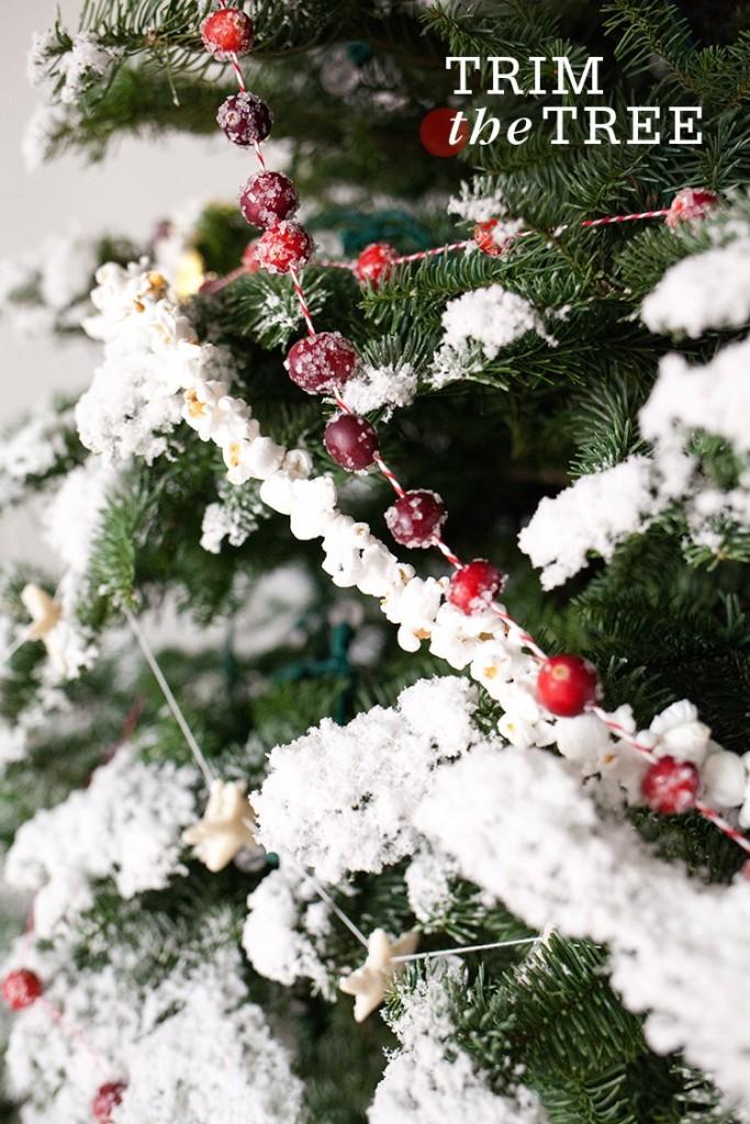 Top 40 Christmas Decoration Ideas Using Cranberries Christmas Celebration All About Christmas