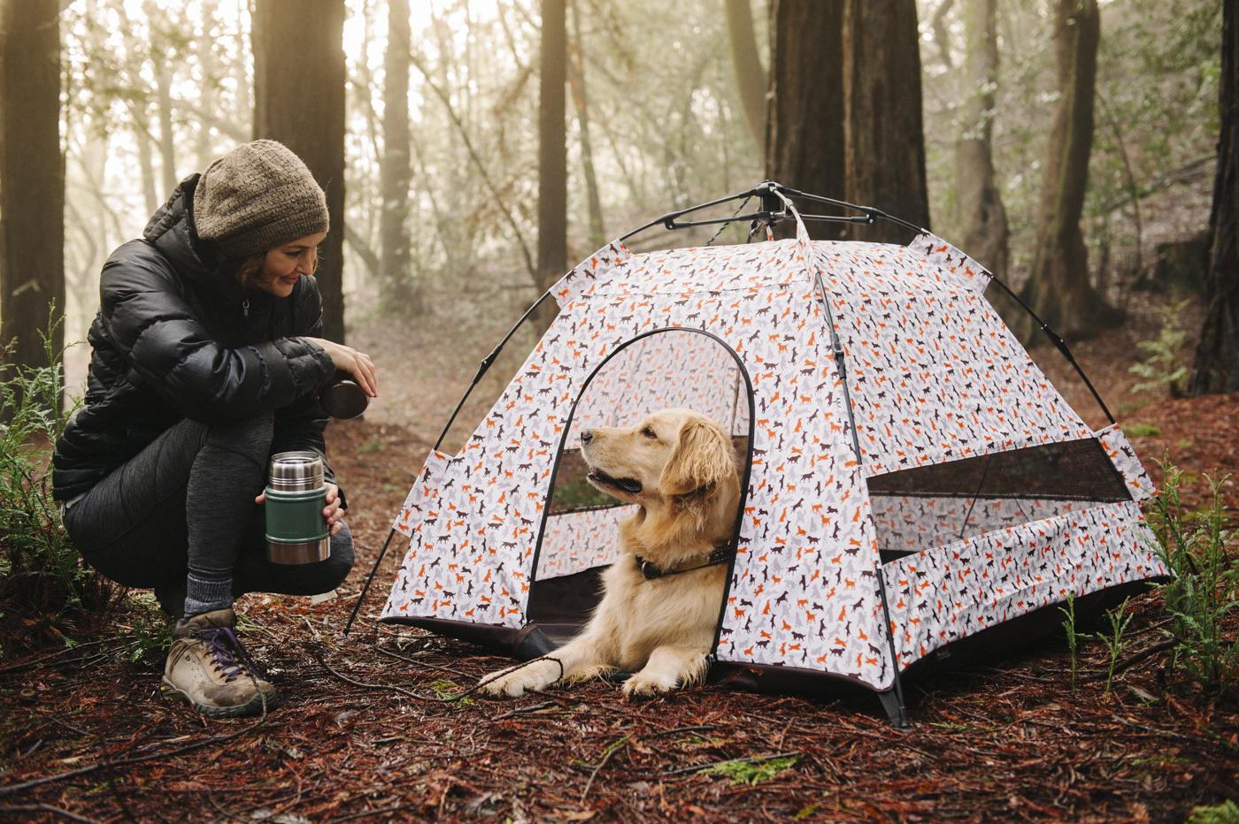 , Weihnachtsgeschenk-Ideen für Haustiere, Weihnachten 2019