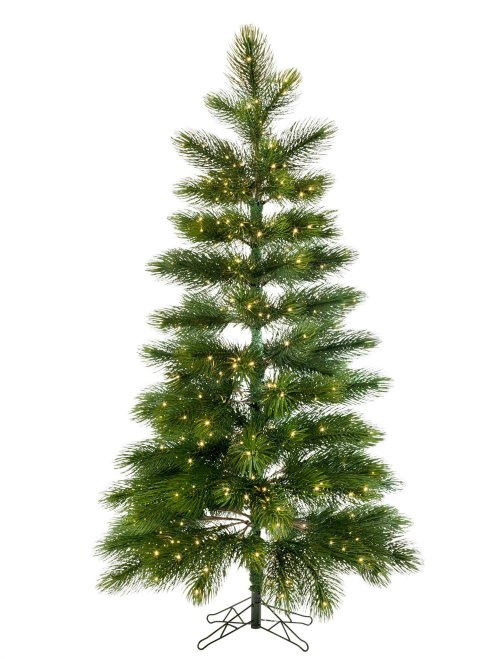 read on to know about the different kinds of christmas trees which are used commonly in homes in fact each tree variety might again have divisions and - Different Kinds Of Christmas Trees