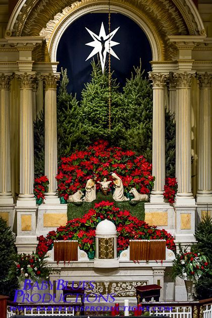 Simple Decoration With Lots Of Greenery And Poinsettias. Save This Unique  Festive Decorating Idea To Change The Appearance Of Your Church.