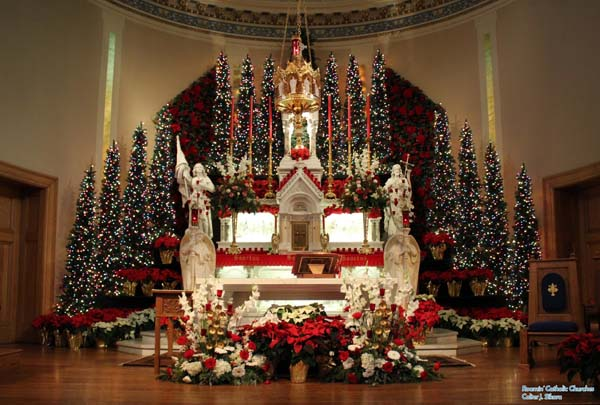 just look at the stunning church decor in red and white flowers what is more catchy than the flowers is the way every inch of those christmas trees was