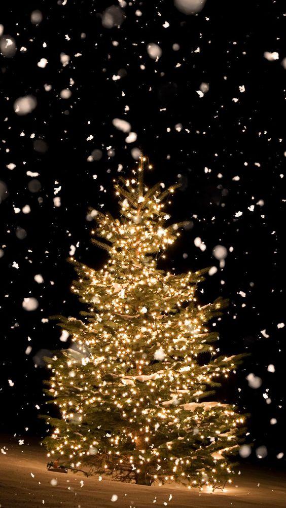 Best Aesthetic Christmas Wallpaper Ideas Christmas