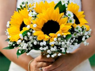 YELLOW-THEME-CHRISTMAS-WEDDING