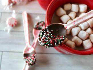 Homemade-Christmas-Gift-Ideas